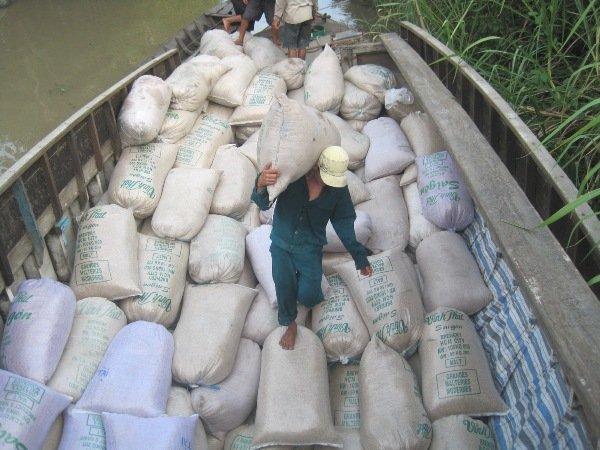 Không dễ xuất khẩu gạo vào thị trường gạo tập trung