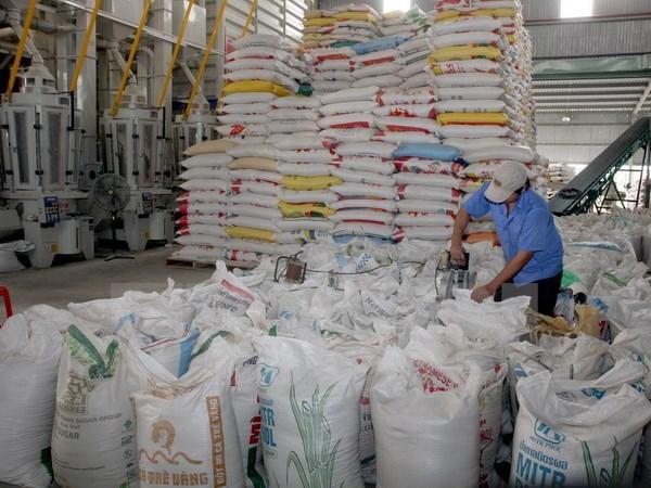 Xuất khẩu gạo gặp nhiều khó khăn trong quý đầu năm nay