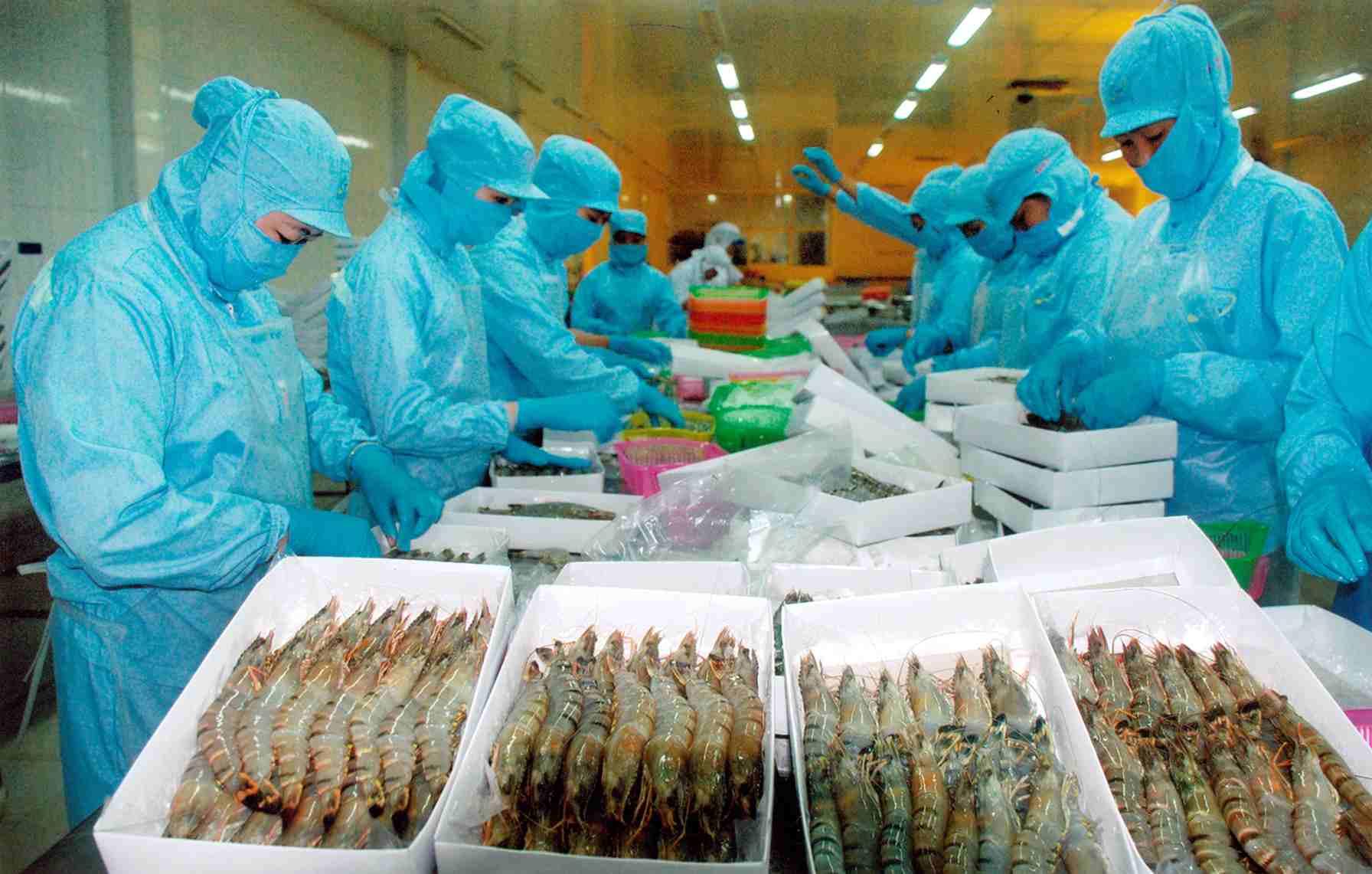 Mỹ điều chỉnh thuế chống phá giá tôm Việt Nam xuống dưới 1%