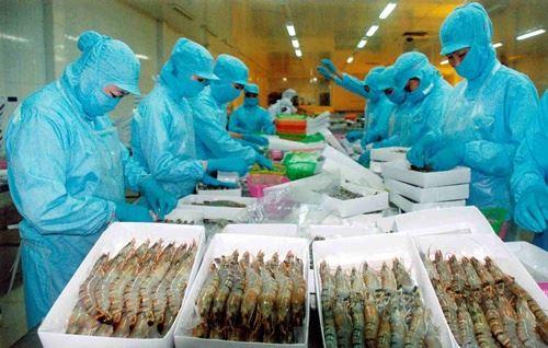 Mỹ giảm thuế chống bán phá giá với tôm Việt Nam