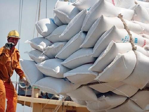 Xuất khẩu gạo sẽ sôi động lại từ cuối tháng 6?