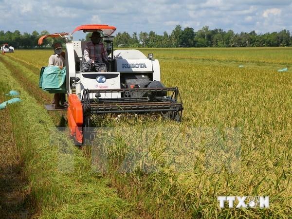 Vốn đầu tư nước ngoài vào nông nghiệp trên cả nước đạt 3,7 tỷ USD